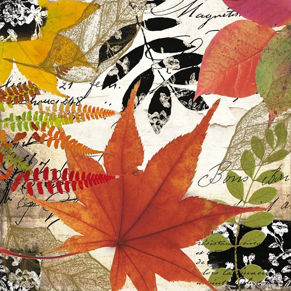 Bild von Autumn Collage Servietten